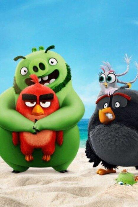 Angry Birds: Летнее безумие 1 сезон